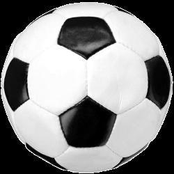 Sportfejlesztési program jóváhagyása